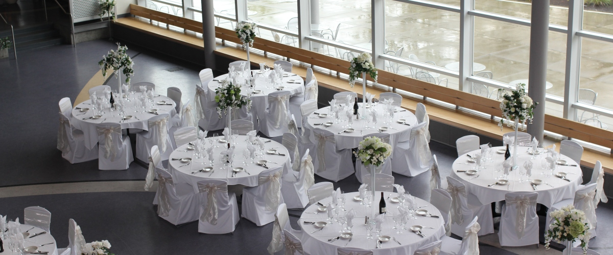 Seattle S Best Chair Covers The Premier Source For Chair